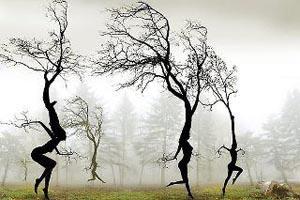 kreativ-psykoterapi.dk/Kreative terapiformer/Dancing trees